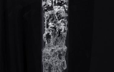 Human substance, 95x15 cm. polymers, 3D printing, plexiglass, 2020