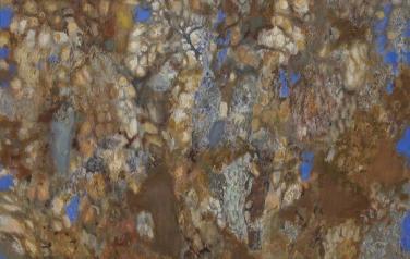 Крона. Холст, масло. 2012. 150х100